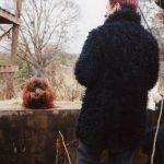 Speaking ASL with orangutan Chantek, Atlanta zoo 2001