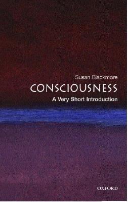 VSI Consciousness